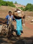 Разделение труда по-индийски