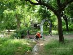 Пруд у подножья Аруначалы. На этом месте любил сидеть Пападжи